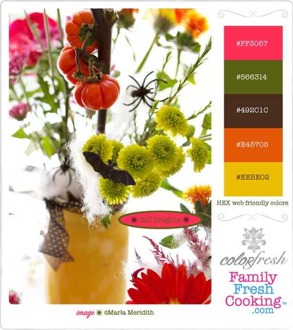 ColorFresh-Palette-Fall-Brights on MarlaMeridith.com
